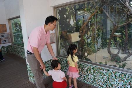 動物園161