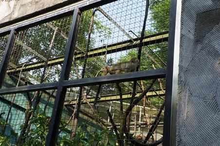 動物園178