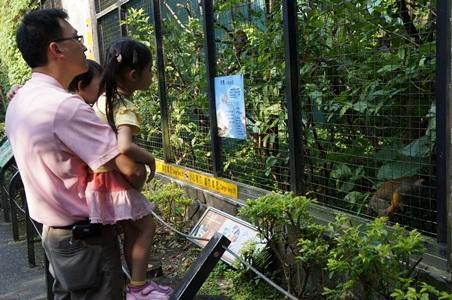 動物園187