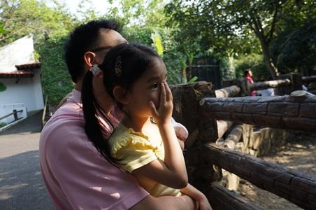 動物園196
