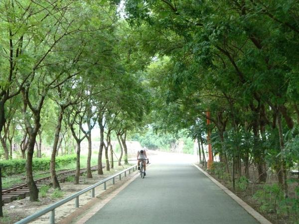東豊綠色繸道05.JPG