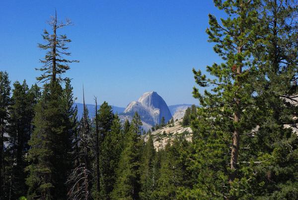 Yosemite 5.jpg