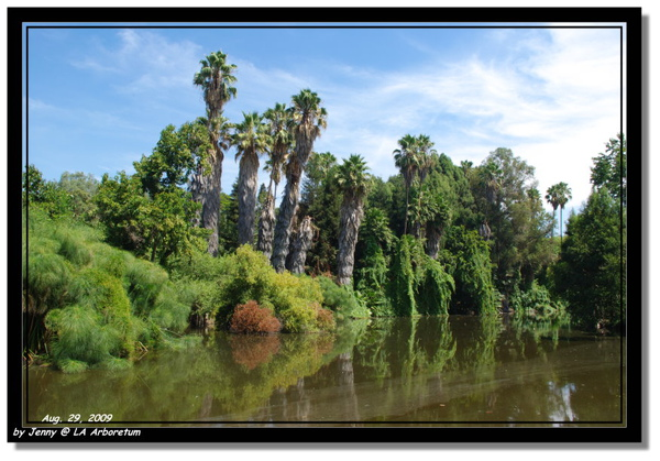 LA Arboretum 32.jpg