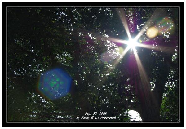 IMGP5641 frame.jpg