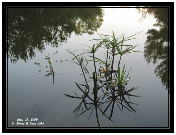 IMG_0168_frame.jpg