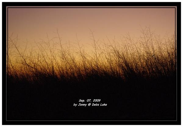 IMGP6013_frame.jpg