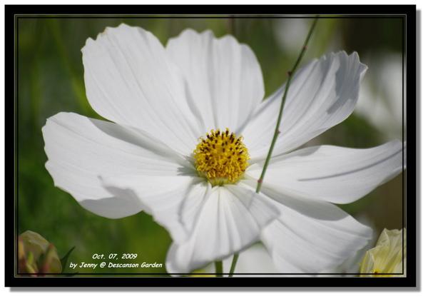 IMGP6920 frame.jpg