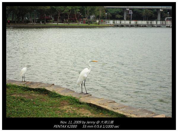 IMGP8144 frame.jpg