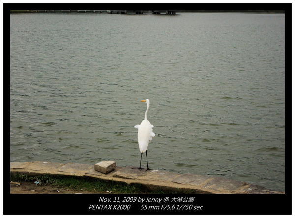 IMGP8151 frame.jpg