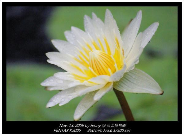 IMGP8396 frame.jpg