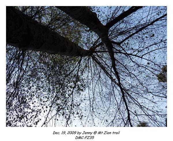 P1020338 frame.jpg