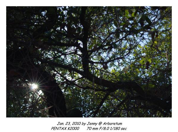 IMGP8895 frame.jpg