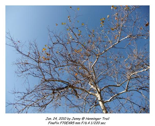 DSCF0426 frame.jpg
