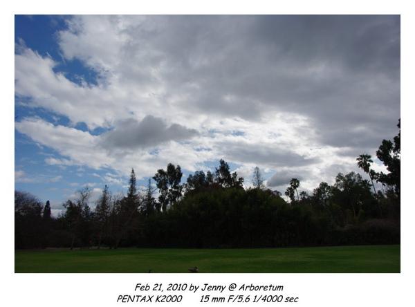 IMGP9486 frame.jpg