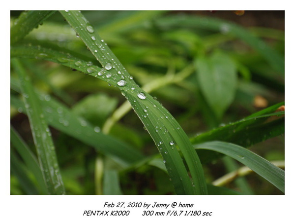IMGP9511 frame.jpg