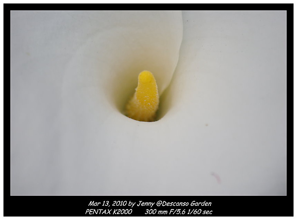 IMGP0030 frame.jpg