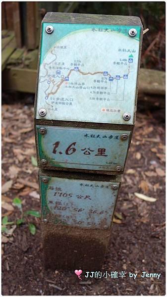 水社11.JPG