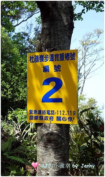 加29.JPG
