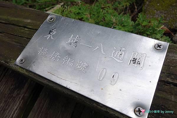 雲龍33.JPG
