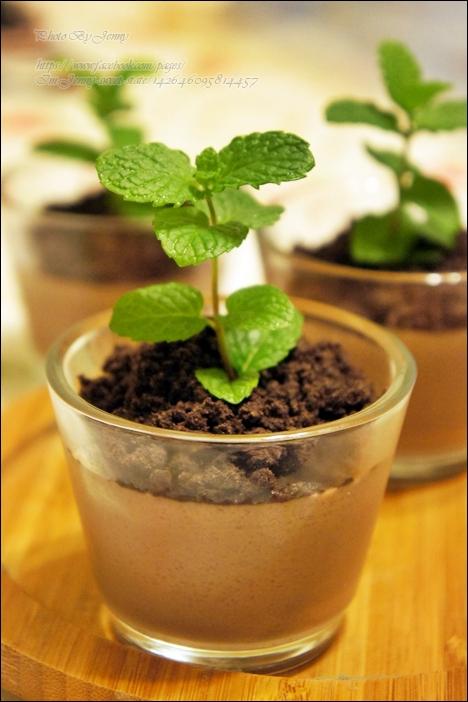 盆栽巧克力布丁5