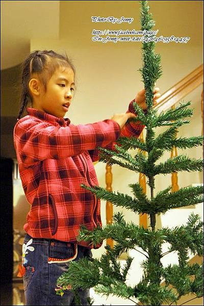 耶誕樹diy6.JPG