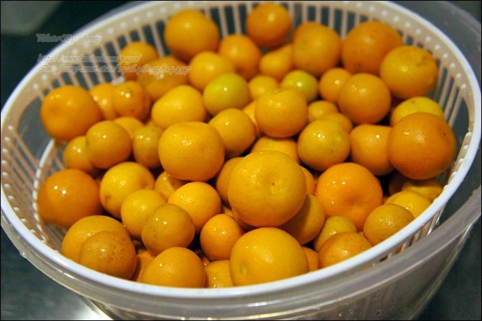 金桔蜜餞2