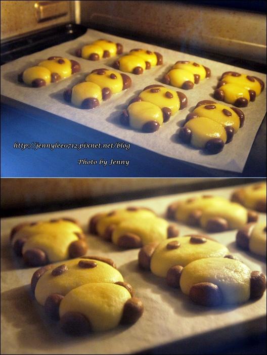 立體貓熊餅乾4