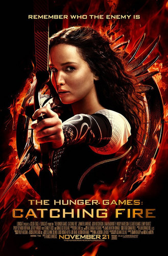 Catching-Fire-the-hunger-games-35689112-329-500