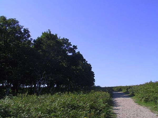 2012 北海道 g1 (83).JPG