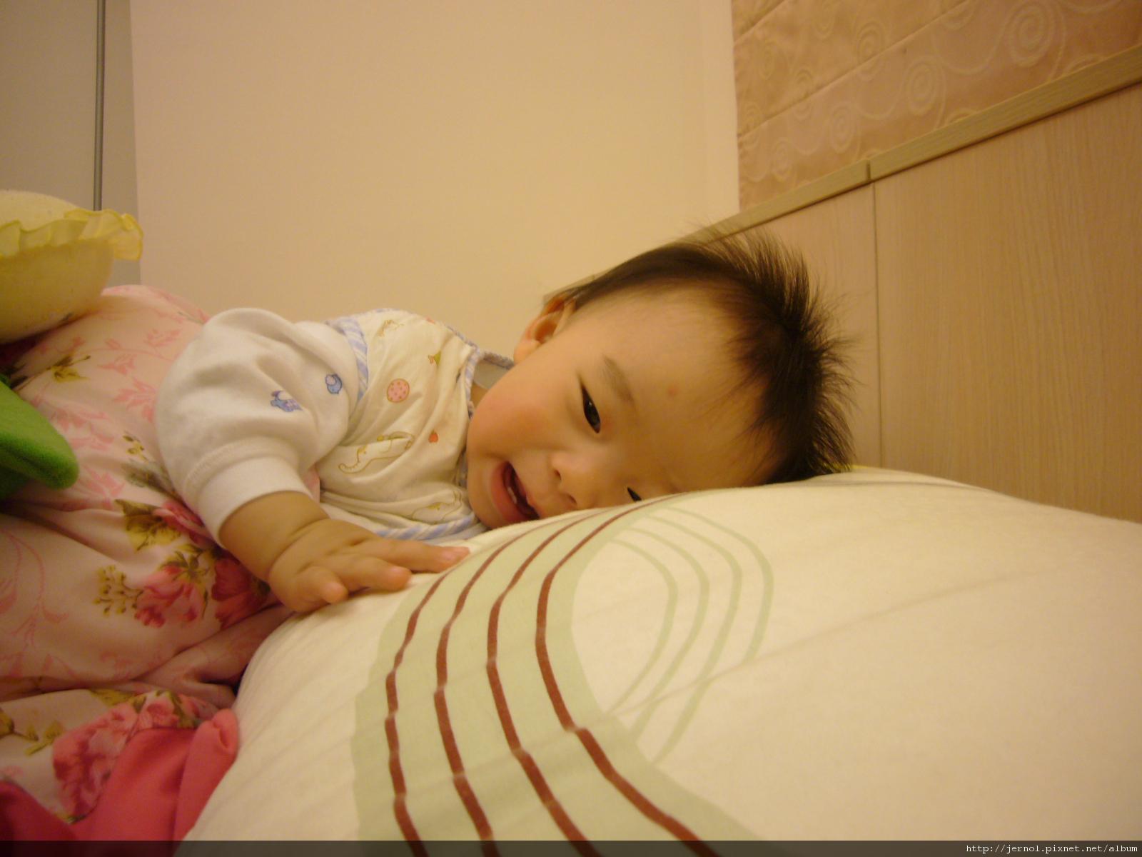 睡覺可愛的皮皮
