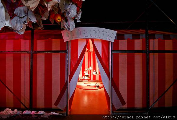 Life's a circus 生命猶如一場燦爛的馬戲盛宴
