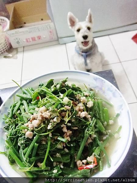 炒龍鬚菜4