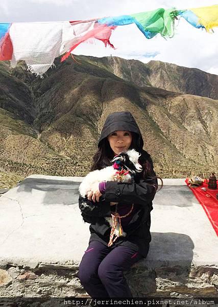 20150914-4抱小羊 (1).jpg