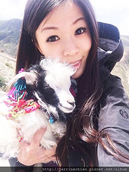 20150914-4抱小羊 (2).jpg