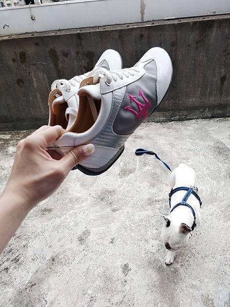瑪莎拉蒂訂製鞋 (1).jpg