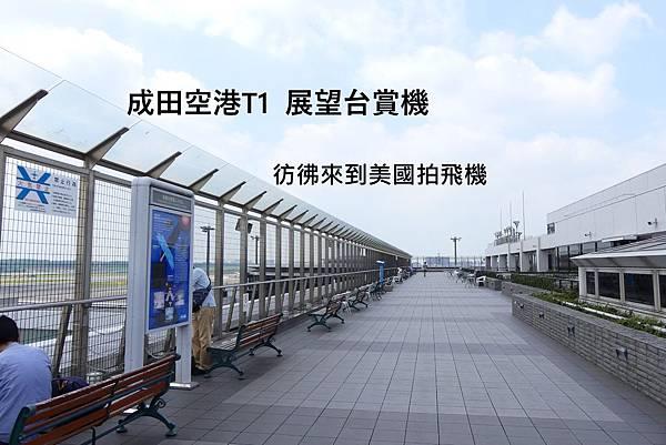 成田空港拍飛機 文章標圖.JPG