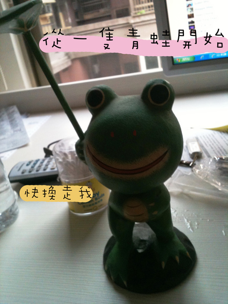 以物易物小青蛙
