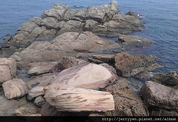 石頭魚.JPG