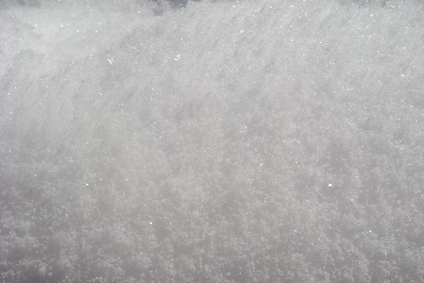 雪12.JPG