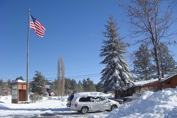 雪22.JPG