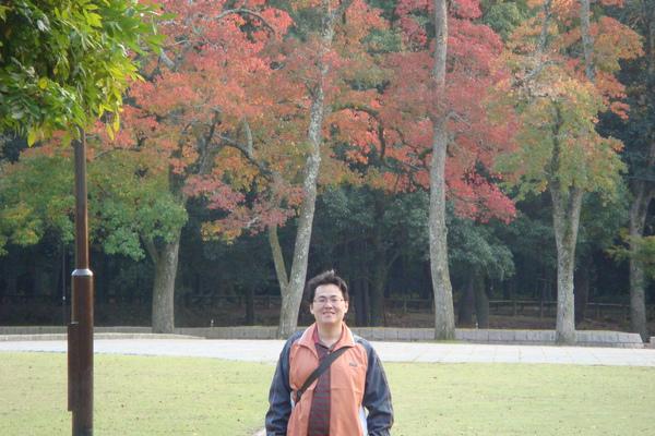 奈28.JPG