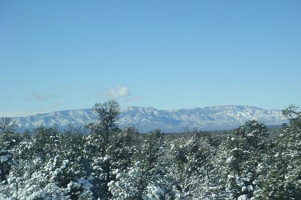 雪29.JPG