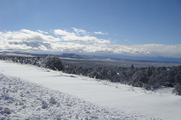 雪26.JPG