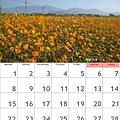 calendar201108.jpg