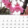 calendar201101.jpg