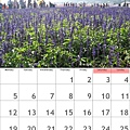 calendar201112.jpg