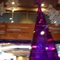 紫色耶誕樹