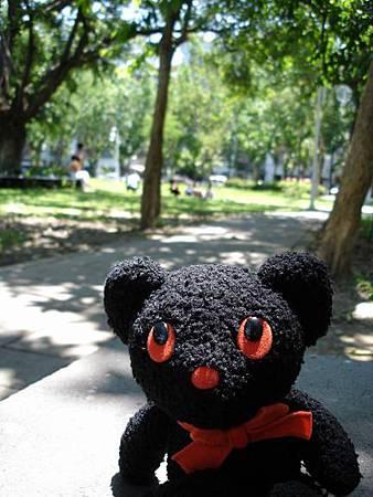 在民生的公園日光浴最舒服啦