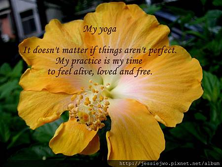 my yoga-1