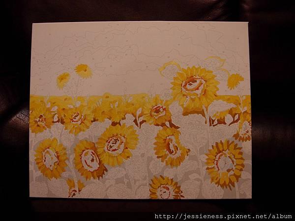 sunflower007